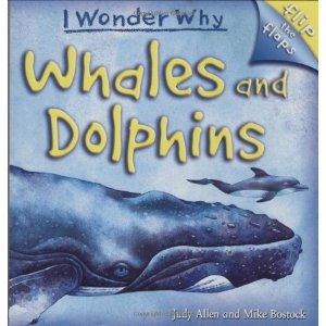 N Whales and Dolphins